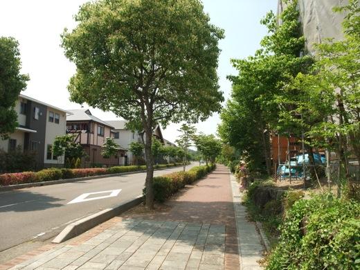 緑に覆われた犬山市:四季の森