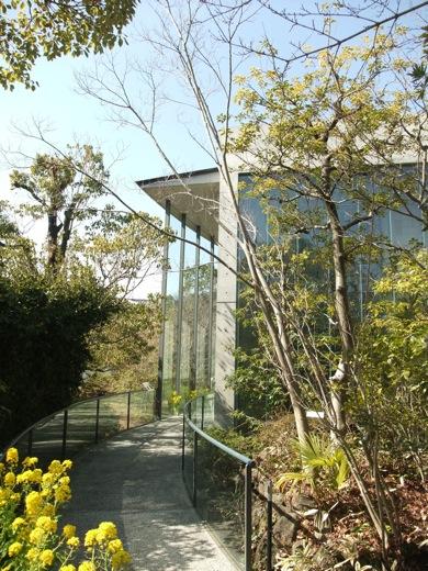 菜の花と司馬遼太郎記念館