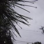 雨.雨..雨…